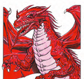 Red dragon MM 2e.png