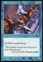 Winged Sliver.jpg